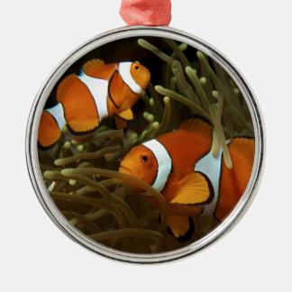 Anemonefish för Amphiprionocellarisclown Rund Silverfärgad Julgransprydnad