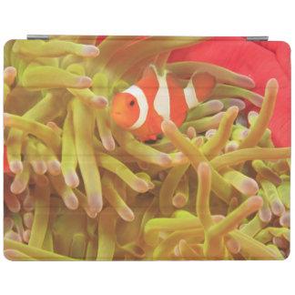 anemonefish på Stillahavs- havsanemon för jätte- iPad Skydd