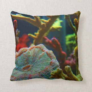 anenomesaltwater avbildar korallakvariumtanken kudde