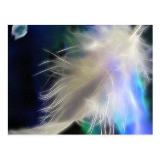 Ängelfjäder, vykort