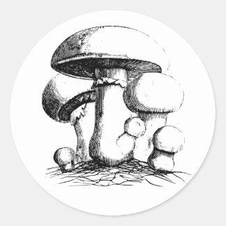 Ängen plocka svamp klistermärkear runt klistermärke
