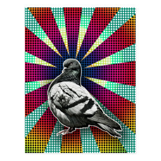 Angry Pigeon Postcard Vykort