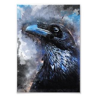 #animals för #bird för kråkakonst#crow fototryck