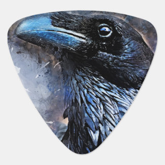 #animals för #bird för kråkakonst#crow plektrum