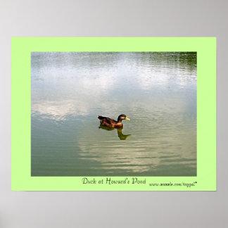 Anka på Howards dammaffischen