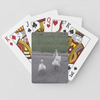 Anka som leker kort spel kort