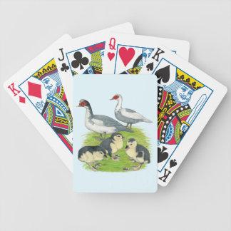 Ankor slösar den Pied Muscovy familjen Spelkort