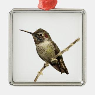 Annas Hummingbird Julgransprydnad Metall