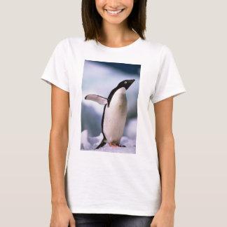 Annons? ljuga pingvinet tröjor