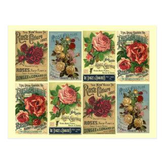 Annonser för kultur för ro för vintage för vykort