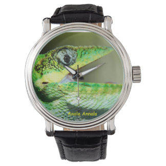 Anole klocka: Anolisequestris Armbandsur