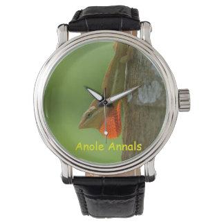 Anole klocka: Anolispulchellus Armbandsur
