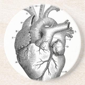 Anpassade för vintagehjärtaanatomi   underlägg sandsten
