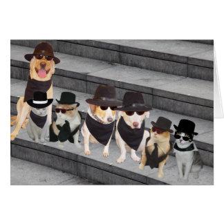 Anpassade från ligan/husdjuren i svart hälsningskort
