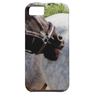 Ansa hästen iPhone 5 Case-Mate cases