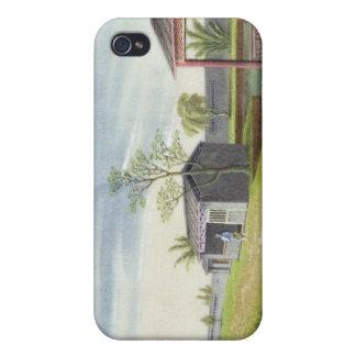 Ansa teaväxter (w/c på papper) iPhone 4 cover