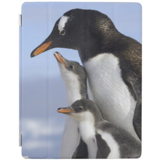 Antarcticpeninsula, Neko hamn, Gentoo iPad Skydd
