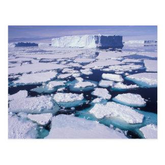 Antarktis isflöde vykort