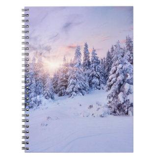 Anteckningsbok för vintergrässkog