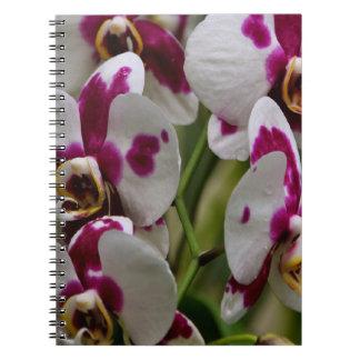Anteckningsbok - Orchid