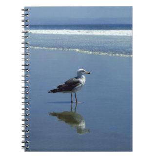 Anteckningsbok/personlig journal - fiskmås på stra spiralbundna anteckningsböcker