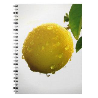 Anteckningsbok/personlig journal - gul citron anteckningsbok