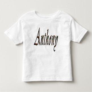Anthony känd logotyp, tröjor