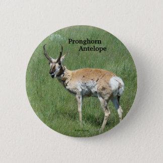 Antilop för A0003 Pronghorn knäppas Standard Knapp Rund 5.7 Cm
