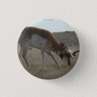 Antilop för A0034 Pronghorn Mini Knapp Rund 3.2 Cm