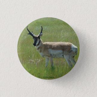 Antilop för A0036 Pronghorn Mini Knapp Rund 3.2 Cm
