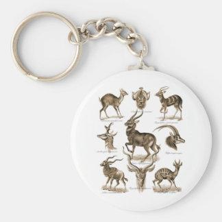 Antilop Rund Nyckelring