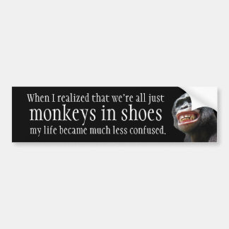 Apor skor in bildekal
