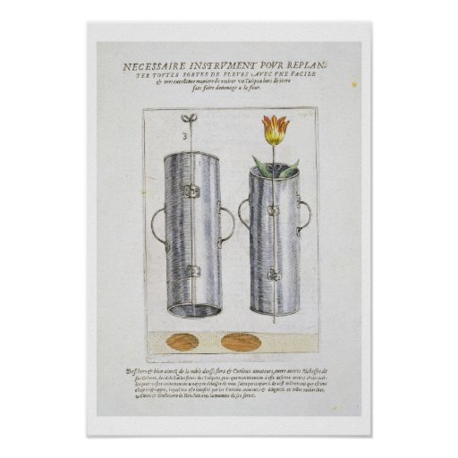 Apparat för beträffande-att plantera blommor, från print