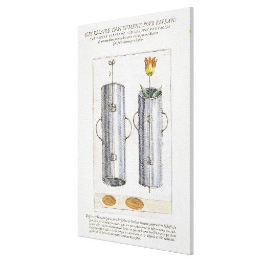 Apparat för beträffande-att plantera blommor, från sträckt canvastryck