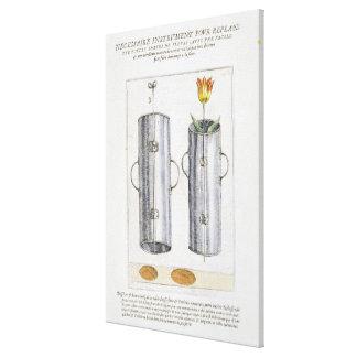 Apparat för beträffande-att plantera blommor, från canvastryck