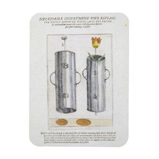 Apparat för beträffande-att plantera blommor, från rektangel magnet