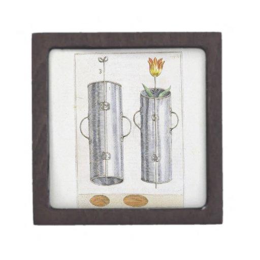 Apparat för beträffande-att plantera blommor, från premie minnesask