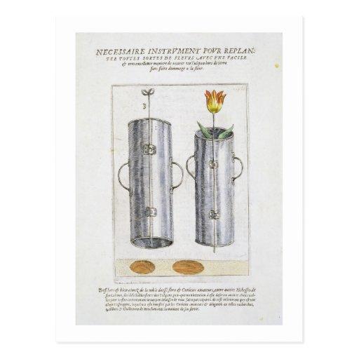 Apparat för beträffande-att plantera blommor, från vykort