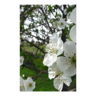 Apple blommar brevpapper