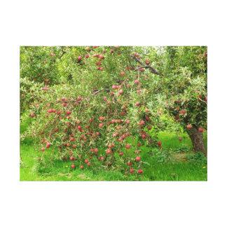 Apple fruktträdgård canvastryck