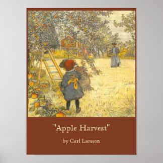 Apple skörd av Carl Larsson Poster