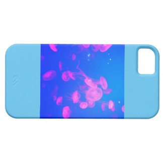 Aqua iPhone 5 Cover