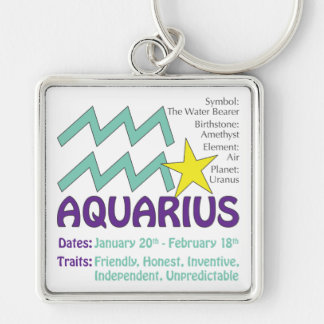 Aquariusdrag Keychain Fyrkantig Silverfärgad Nyckelring