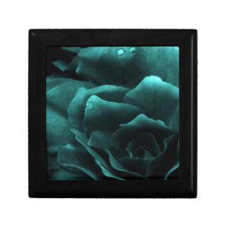 Aquaslut upp av en dubbel Begonia Smyckeskrin