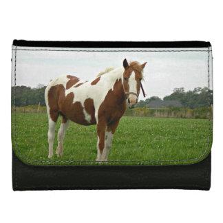 Aquebogue målade hästen
