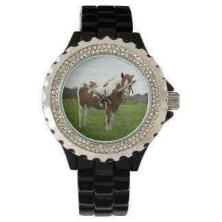 Aquebogue målade hästen armbandsur