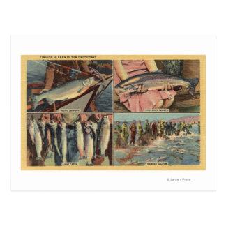 """Är fiske bra i den Northwest"" - chinooken Vykort"