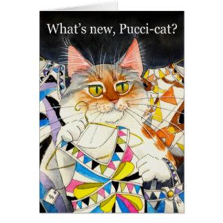 Är vad den nya Pucci-katten? Hälsningskort