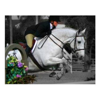 Arabisk hästbanhoppning vykort
