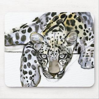 Arabisk Leopard 2008 6 Musmatta